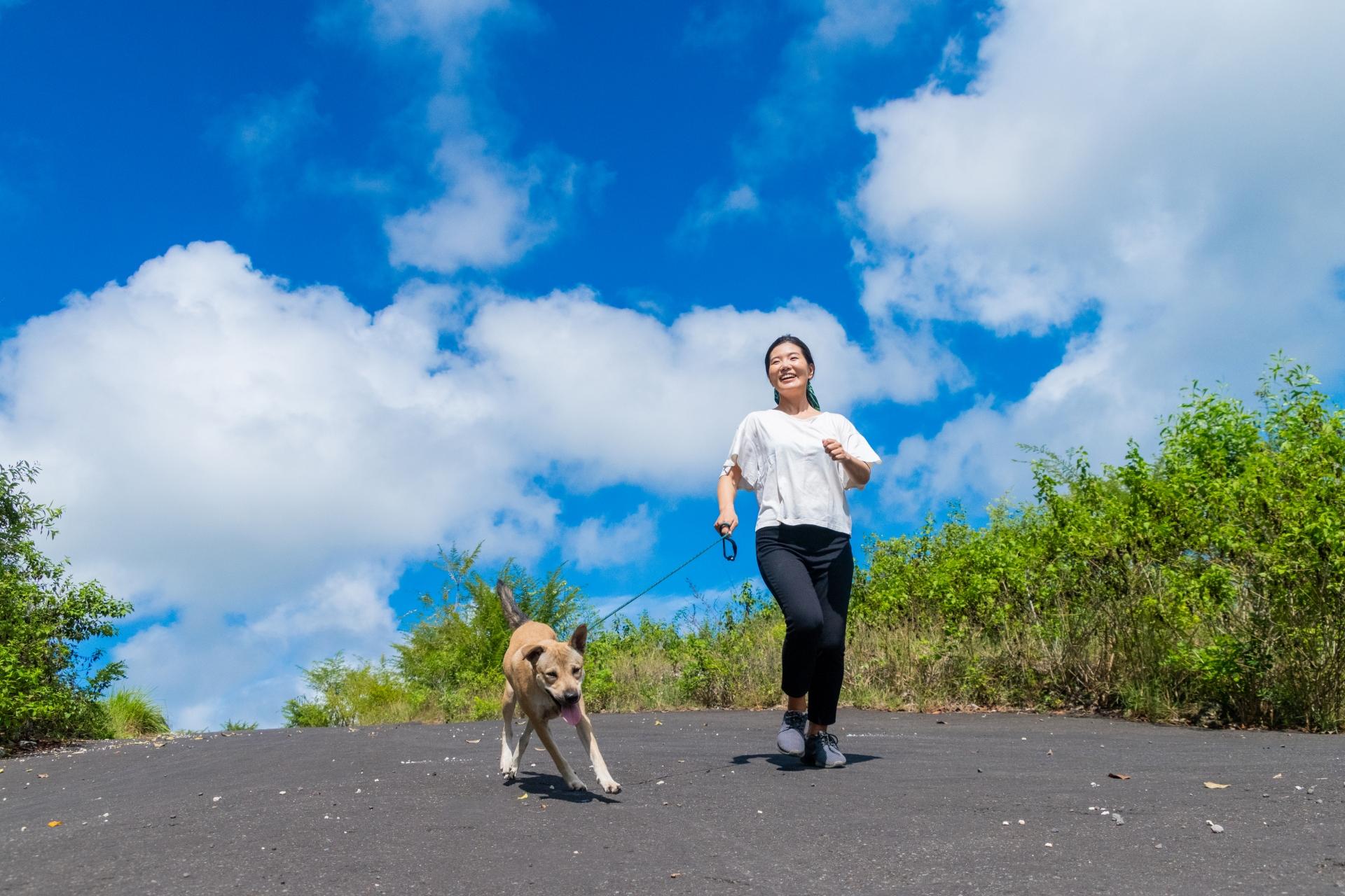 犬と歩く女性