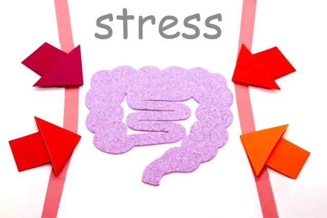 ストレスを受ける腸